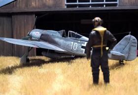 Mit Pilot in 1/48